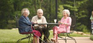 help seniors to get involved