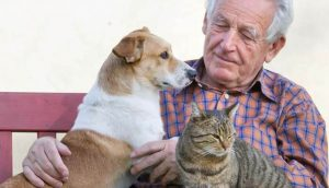 Companion Pets In Assisted Living